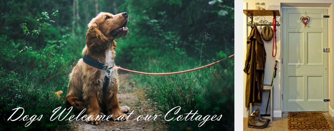 Gamekeepers Cottage and Cross Cottage are Dog Friendly Holiday Cottage North Yorkshire